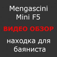 Mengascini Mini F5. Видео-обзор.